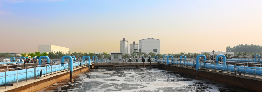 Reducing disposal costs for sewage sludge